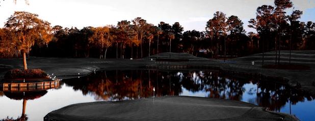 PGA_2012_TPC_SawgrassNo17_3