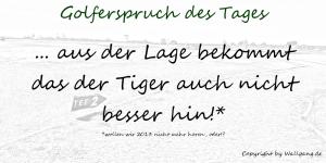 Spruch 30 wallgang.de