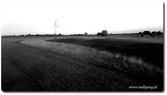 Wallgang_de_s_w_bild_12