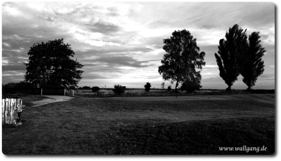 Wallgang_de_s_w_bild_13