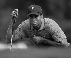 Tiger Woods sw