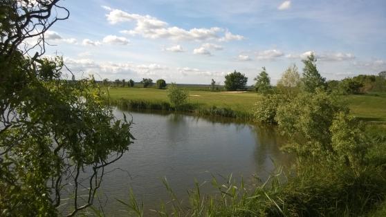 17_Mai_2014_golfen_mit_freunden_11